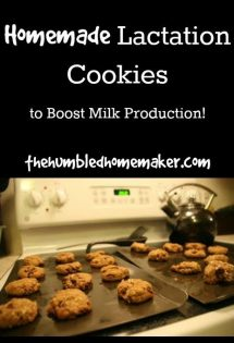 Homemade Lactation Cookies - TheHumbledHomemaker.com
