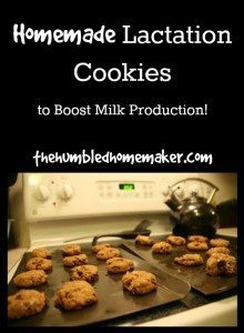 Homemade Lactation Cookies: Boost Your Milk Production!