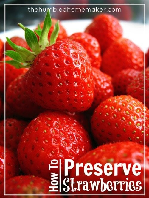 How to Preserve Strawberries - TheHumbledHomemaker.com