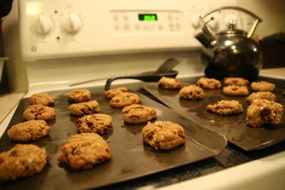 Homemade Lactation Cookies - The Humbled Homemaker