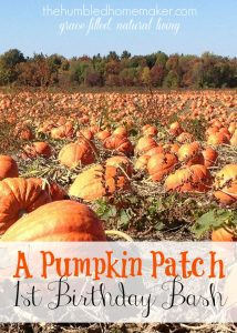 A Pumpkin Patch 1st Birthday Bash