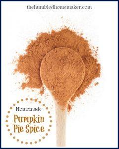 Pumpkin Pie Spice {and a Pumpkin Recipe Round-Up}