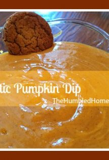 Probiotic Pumpkin Dip