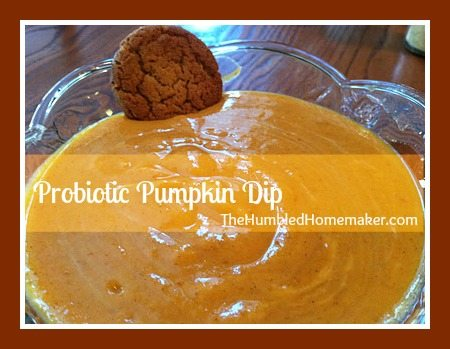 probiotic pumpkin dip at thehumbledhomemaker.com