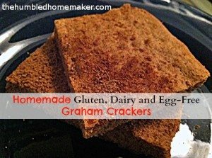 Homemade Gluten, Dairy and Egg-Free Graham Crackers