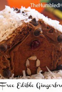 "Edible, Allergen-Free ""Gingerbread"" House"