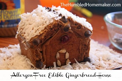SO great for kids with food allergies!! Here is a step-by-step tutorial for making a gingerbread house using gluten, dairy, and egg free graham crackers and nut butter.
