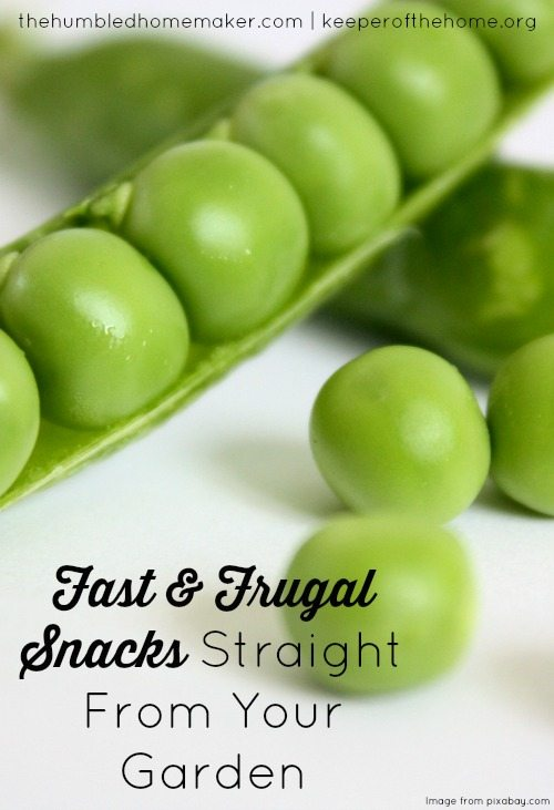 From the super easy veggies that require nothing more than picking, washing and (sometimes) cutting to the snacks that require a little more prep, you may have all you need for a great summer snack sitting right in your backyard.
