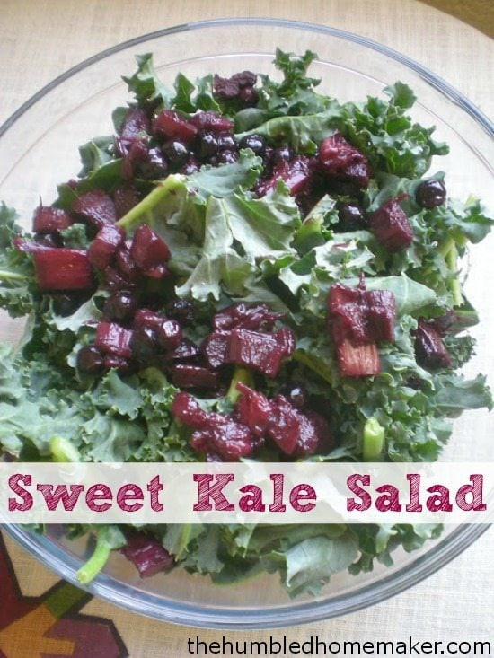 This kale salad is chock full of sweetness with just a little bit of tang. You will love it!