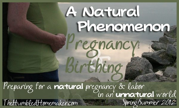 A Natural Pregnancy Series for Expectant Moms