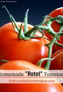 "Homemade ""Rotel"" Tomatoes"