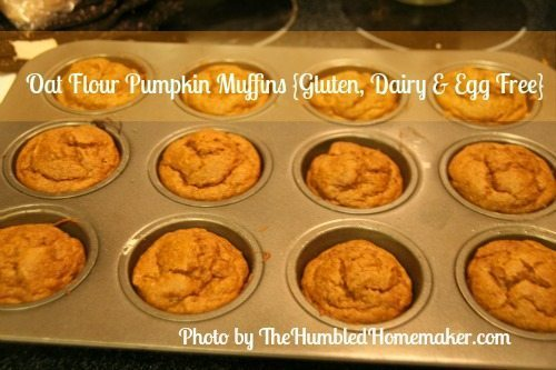 Oat-Flour-Pumpkin-Muffins - TheHumbledHomemaker.com