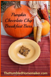 Pumpkin Chocolate Chip Breakfast Bars {Gluten, Dairy and Egg Free}