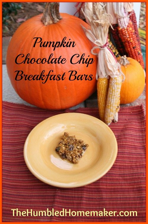 Not sure what to do with all your leftover pumpkin puree? These pumpkin chocolate chip breakfast bars are simple, healthful and the perfect way to start the day!