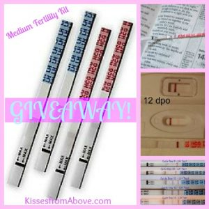 Medium Fertility Kit GIVEAWAY from Kisses from Above!