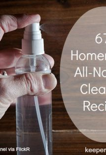 67+ Homemade, All-Natural Cleaning Recipes
