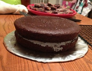 Garbanzo Bean Chocolate Cake That's Gluten, Egg, Dairy, Refined-Sugar and Tree-Nut Free