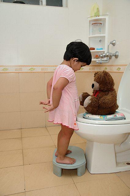 potty training a bear