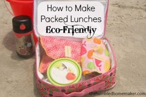 How to Make Packed Lunches Eco-Friendly {Mighty Nest Review}