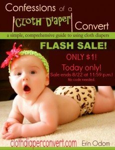 FLASH SALE! Get My Cloth Diapering eBook for only $1! Today Only!