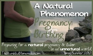 Natural pregnancy and childbirth series for moms