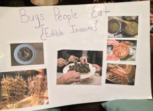 """Teaching Kids About Bugs…the Most """"Natural"""" Food on the Planet"""