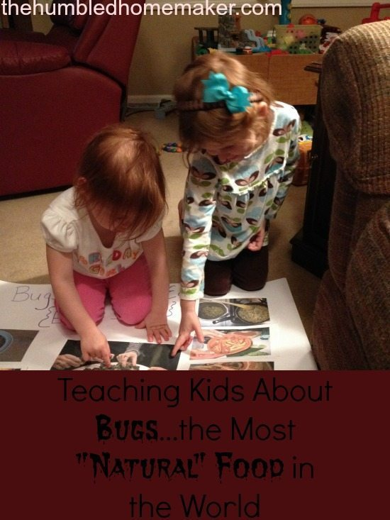 Teaching Kids About Bugs