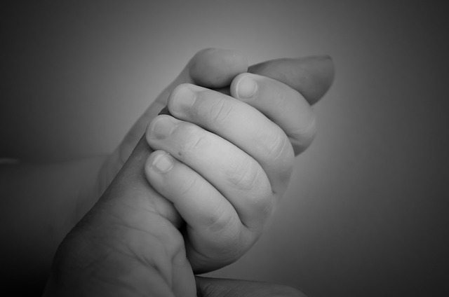 maternal-love-71278_640