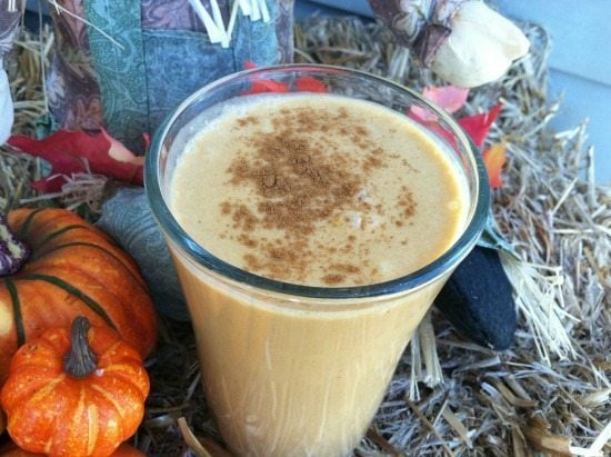 Pumpkin Smoothie- SO Yummy!-The Humbled Homemaker