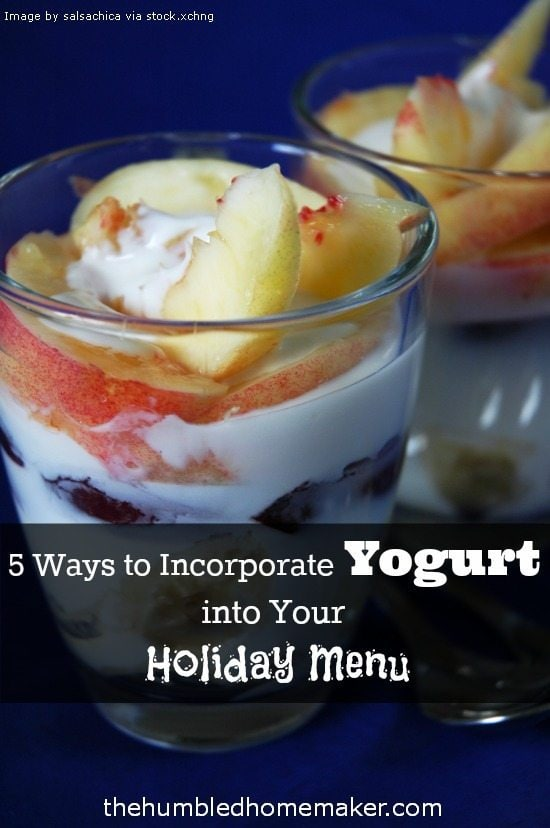 Yogurt is a super food that is not to be missed! I love these 5 creative ideas on incorporating yogurt into any holiday meal plan!
