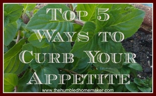 Top 5 Ways to Curb Your Appetite- TheHumbledHomemaker.com