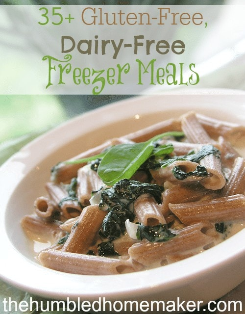 35+ Gluten-Free, Dairy-Free Freezer Meals The Humbled Homemaker