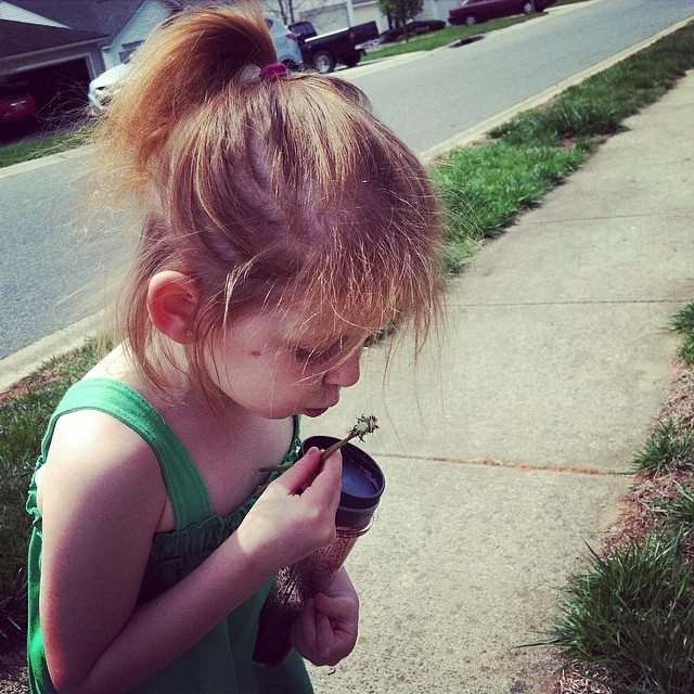 My two oldest girls had a blast finding dandelions to blow on a walk this week! Here's my 5-year-old red!