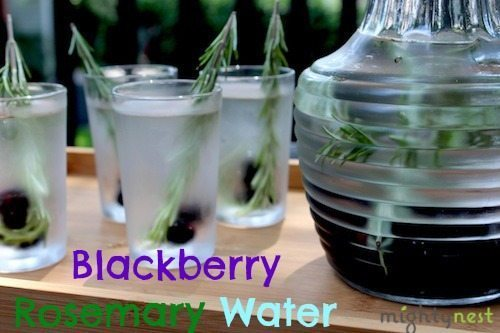 Blackberry Rosemary water w logo