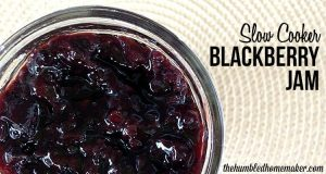 Slow Cooker Blackberry Jam Recipe
