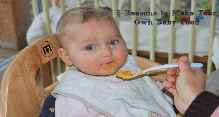 5 Reasons to Make Your Own Baby Food  The Humbled Homemaker