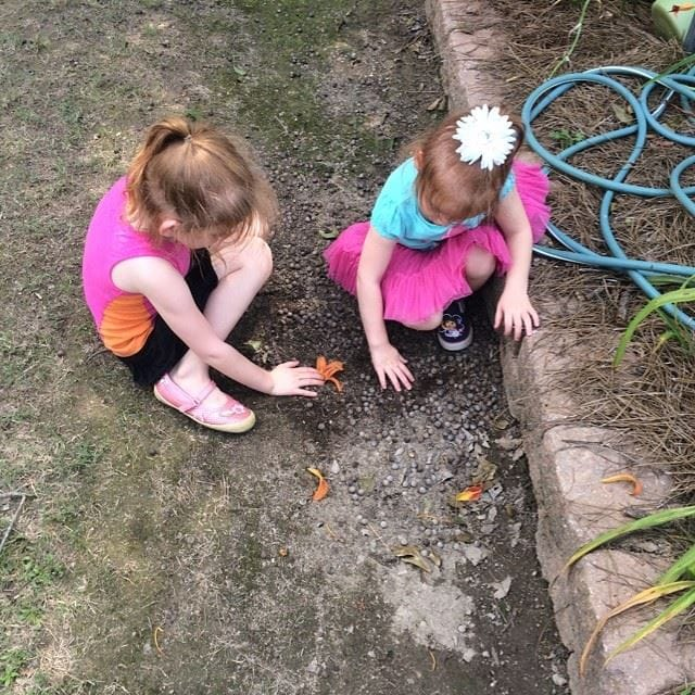 "Who needs toys? The girls enjoyed pretending that a flower petal was their ""buried treasure."""