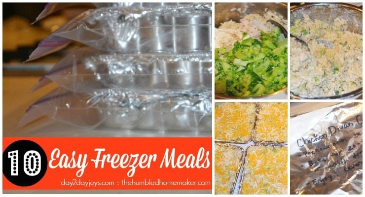 10 Easy Freezer Meals that You'll Love!