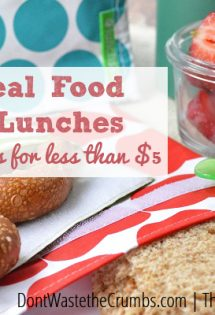 Easy School Lunches - TheHumbledHomemaker.com