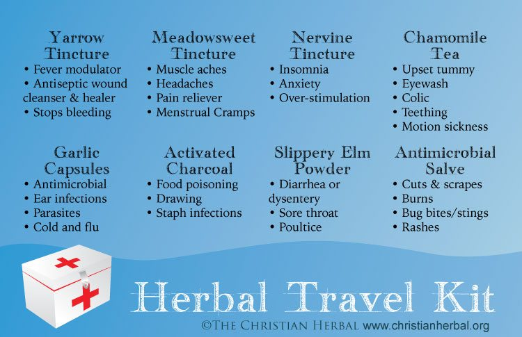 Here are 8 essential herbal remedies to include in your herbal travel kit.