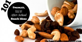 101 Healthy After-School Snack Ideas - TheHumbledHomemaker.com