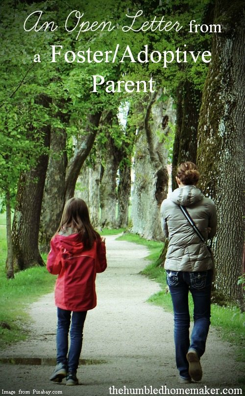 Wow, what an amazing bit of insight into the life of an adoptive/foster mother! A must read for everyone!