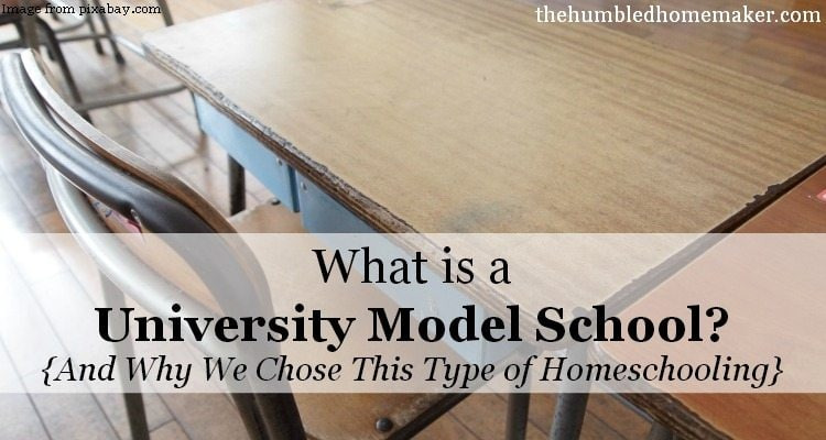 What is a University Model School?