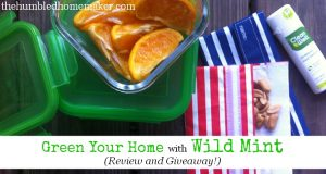 Green Your Home with Wild Mint
