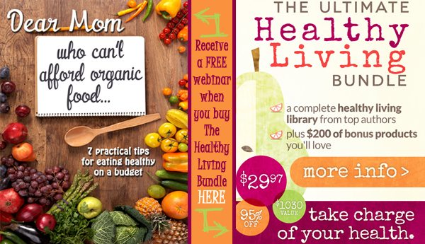 Healthy living bundle free webinar2