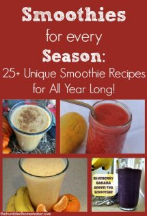 To spice things up a bit, I decided to curate a list of unique smoothie recipes for each season of the year. My state of North Carolina actually experiences every bit of fall, winter, spring and summer...and I'm excited to try each of these out this year!