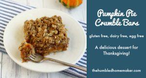 Pumpkin Pie Crumble Bars {Gluten, Dairy, and Egg Free}