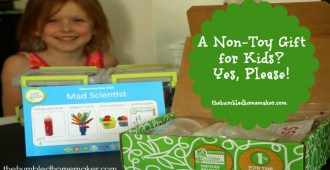 A-Non-Toy-Gift-for-Kids-Green-Kid-Crafts1