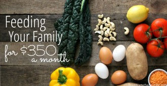You CAN feed your family real food on a budget! This is an awesome resource for feeding a family of 4 on just $350 per month!