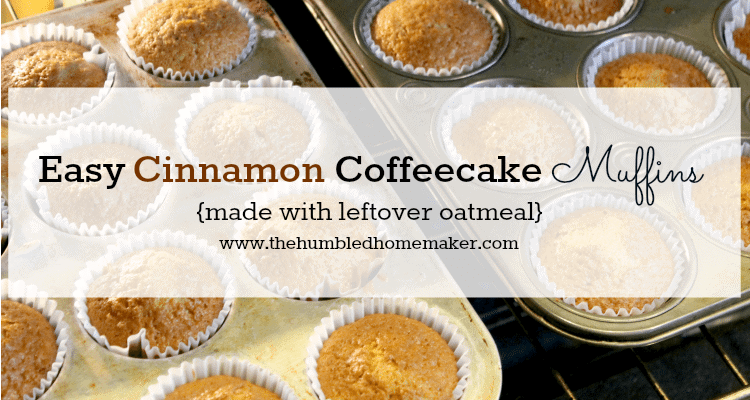 Cinnamon coffee cake muffins made with leftover oatmeal for What to make with leftover applesauce